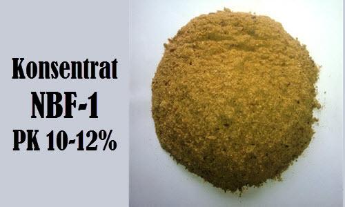 DDGS (Destilled Dried Grains Soluble)