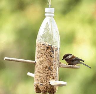 Cara Membuat Pakan Burung Dari Botol Plastik Sederhana